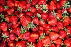 Fond de fraise Images stock