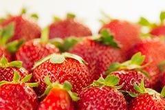 Fond de fraise des fraises entières au soleil Fraises mûres colorées de baies Fond de fruit Bagout de fraise Photos stock
