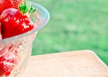 Fond de fraise, jour ensoleillé Image libre de droits