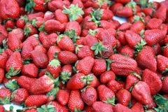Fond de fraises Image libre de droits