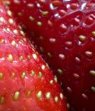 Fond de fraises de source Images stock