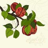 Fond de fruit coloré par vecteur illustration de vecteur