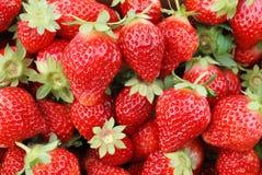 Fond de fruit de fraise Image libre de droits