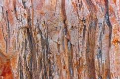 Fond de grès avec une texture et un soulagement bien définis Image stock