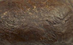 Fond de grain de café Image stock