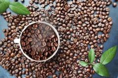 Fond de grains de café avec la tasse blanche dans les feuilles moyennes et vertes image libre de droits