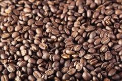 Fond de grains de café Photographie stock