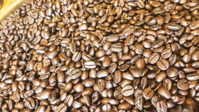 Fond de grains de café Photos libres de droits