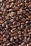 Fond de grains de café Photos stock