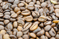 Fond de grains de café Photos stock