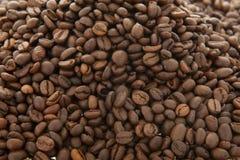 Fond de grains de café Image stock
