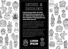 Fond de griffonnages de vecteur de cactus et de succulents Photographie stock
