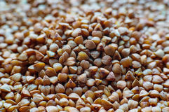 Fond de gruau cru de sarrasin Photo libre de droits