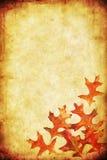 Fond de grunge d'automne Image stock