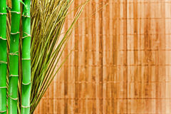 Fond de grunge de bambou et d'herbe Photos stock