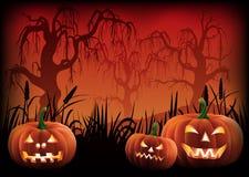 Fond de Halloween avec le vecteur effrayant de potirons photo libre de droits