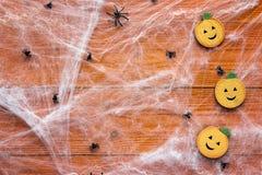 Fond de Halloween avec les potirons décoratifs, le Web rampant et le PS Images stock