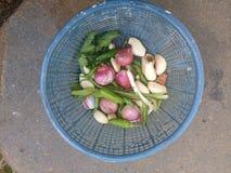 Fond de Javanese d'ingrédients photo libre de droits