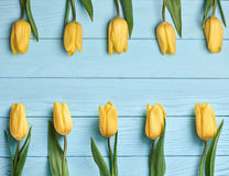 Fond de jour de mères Jaune de tulipes sur le bois bleu Photographie stock libre de droits