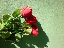 Fond de jour de Valentine Image stock