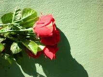 Fond de jour de Valentine Image libre de droits