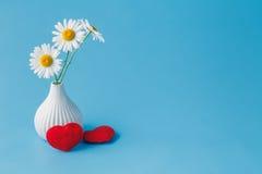 Fond de jour de valentines avec la marguerite et les coeurs mous Image stock