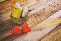 Fond de jour de valentines Couples des coeurs et de deux oiseaux Image stock