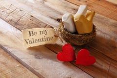 Fond de jour de valentines Couples des coeurs et de deux oiseaux Image libre de droits