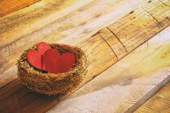 Fond de jour de valentines Couples des coeurs rouges dans le nid Image stock