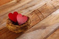 Fond de jour de valentines Couples des coeurs rouges dans le nid Images libres de droits