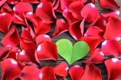 Fond de jour de valentines : Feuille en forme de coeur et pétales de rose rouges Photographie stock libre de droits