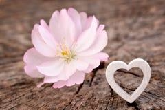 Fond de jour de Valentines avec le coeur image libre de droits