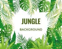 Fond de jungle Arbres et centrales de jungle illustration stock