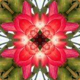 Fond de kaléidoscope Images stock