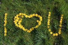 Fond de l'amour U Photographie stock libre de droits
