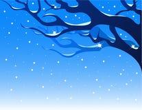Fond de l'hiver. Images libres de droits