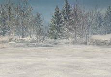 Fond de l'hiver d'imagination Photographie stock libre de droits