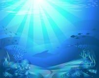 Fond de la mer avec des coraux Photos libres de droits