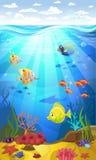 Fond de la mer avec des coraux Photo stock