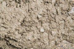 Fond de la solution fraîche de ciment Photographie stock libre de droits