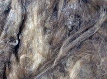 Fond de laine de verre Photo stock