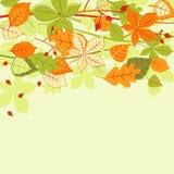 Fond de lames d'automne Photos stock