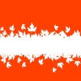Fond de lames d'automne avec la planche Images libres de droits