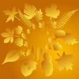 Fond de lames d'automne de vecteur Images stock