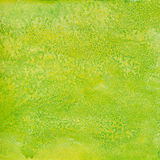 Fond de Livre vert Image stock