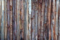 Fond de logarithme naturel Photographie stock