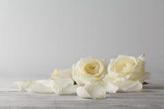 Fond de Loral avec le bouquet de roses dans des couleurs en pastel Images stock