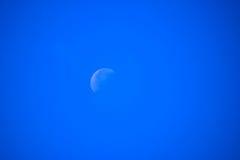 Fond de lune bleue Image stock