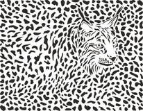 Fond de Lynx Photo libre de droits