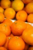 Fond de mandarine photos stock